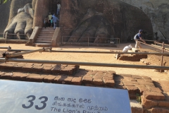 Sri Lanka -Sigiriya Löweneingang diekreuzfahrtblogger.de
