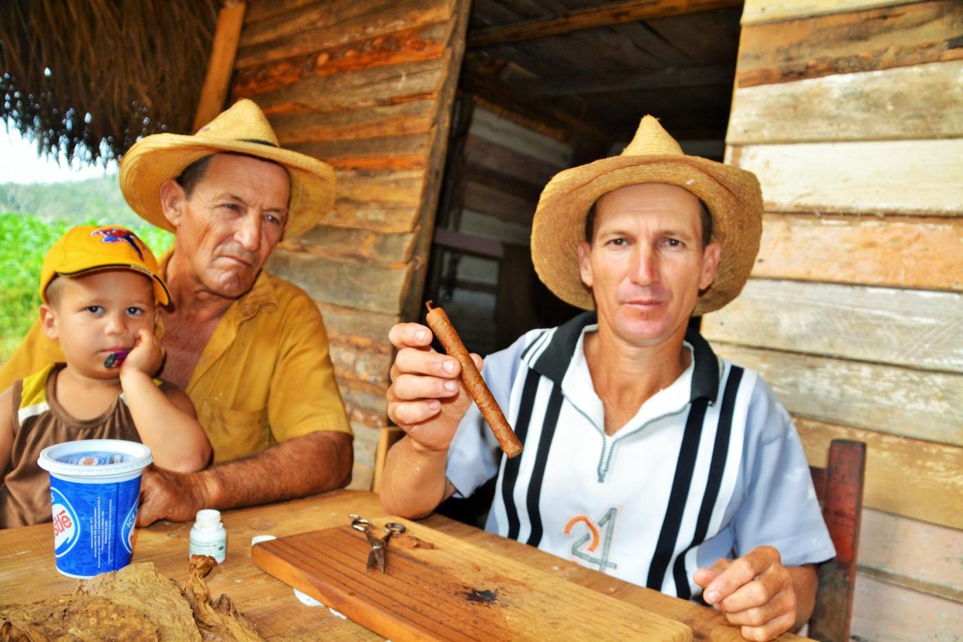 Zigarre rollen