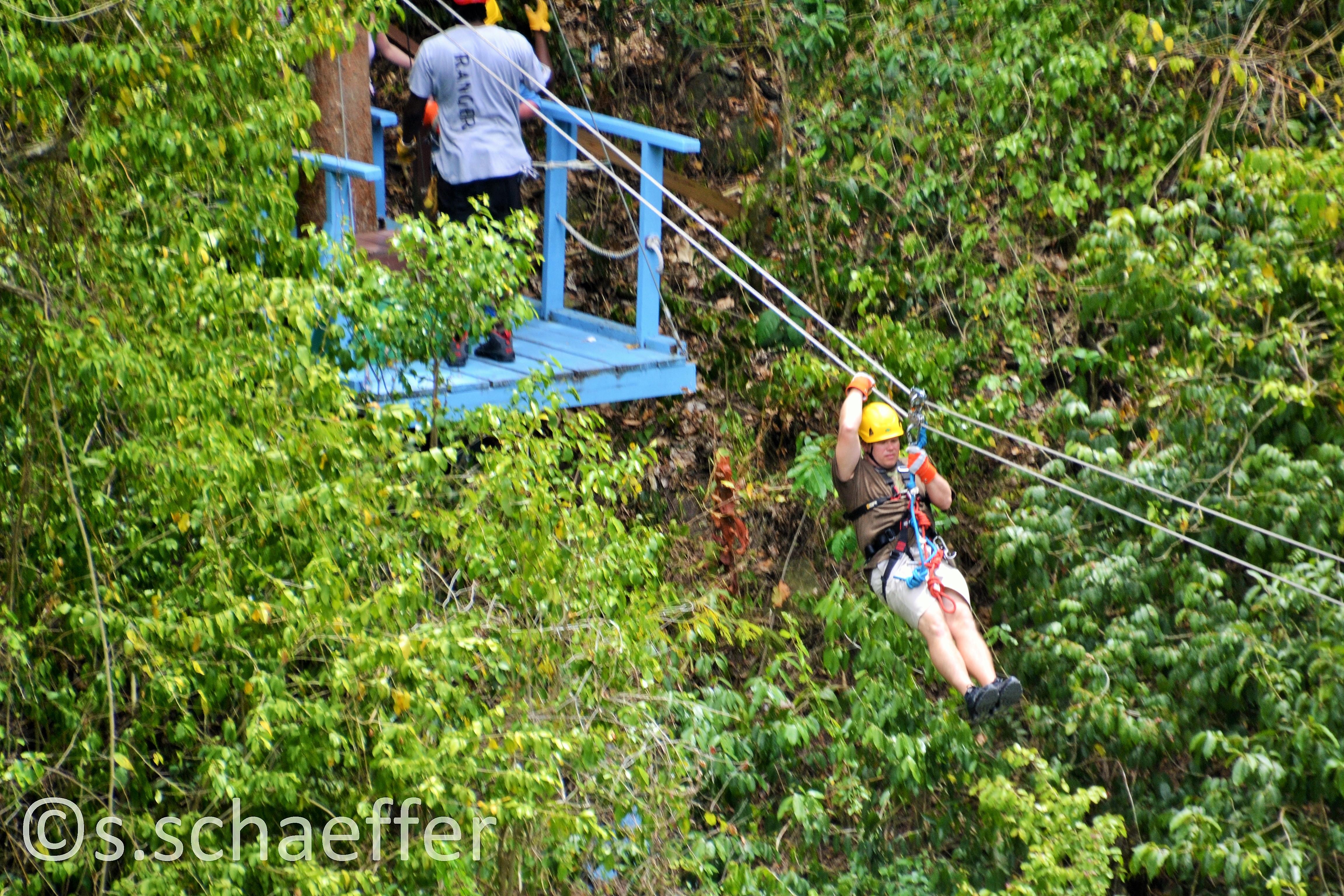 Ausflug der Reedereien: Zip-Line durch Regenwald