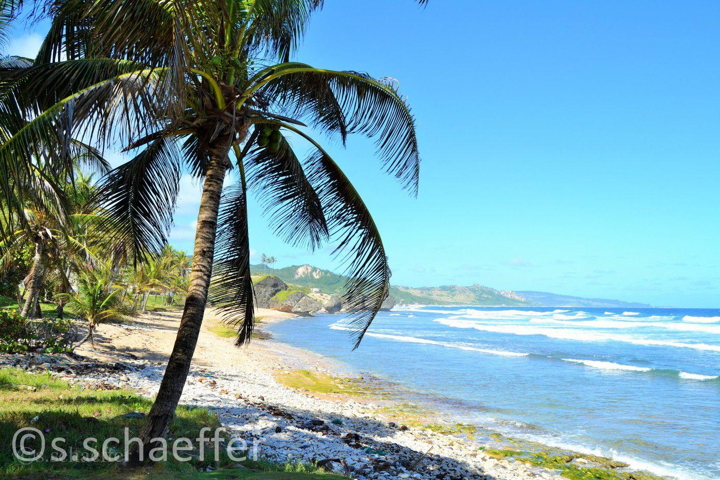 Karibik Kreuzfahrten: Barbados