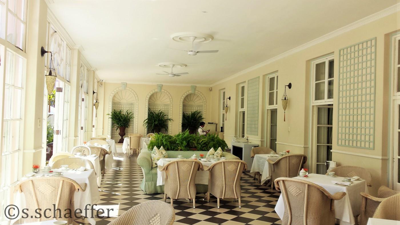 Wunderschöner Platz für den High Tea am Nachmittag: der Wintergarten
