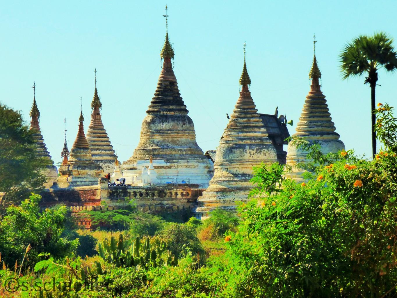 Das Tempelfeld von Bagan