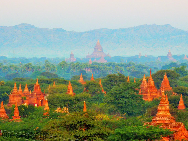 Bagan Tempelfeld, Myanmar