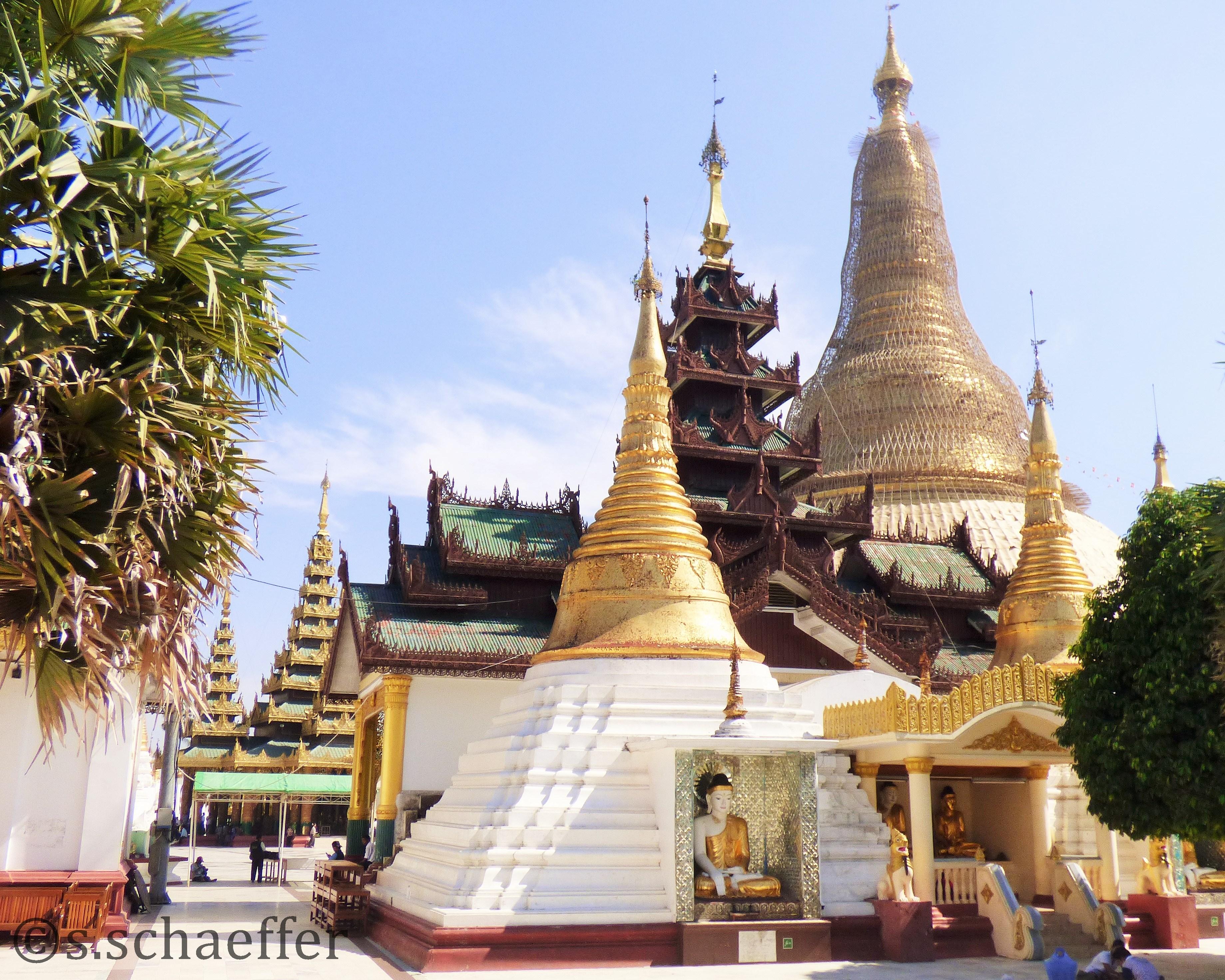 yanmar Shwedagon