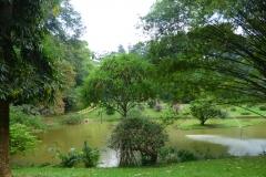 Peranediya -Botanical Garden Kandy - Sri Lanka - diekreuzfahrtblogger.de
